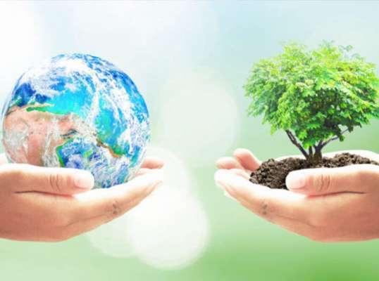 Conciencia Sustentable